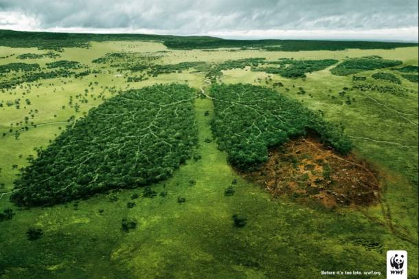WWF Plakát Forrás: theinspirationroom.com