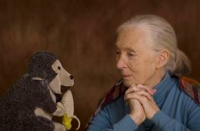 Dr. Jane Goodall 2018-as újévi üzenete